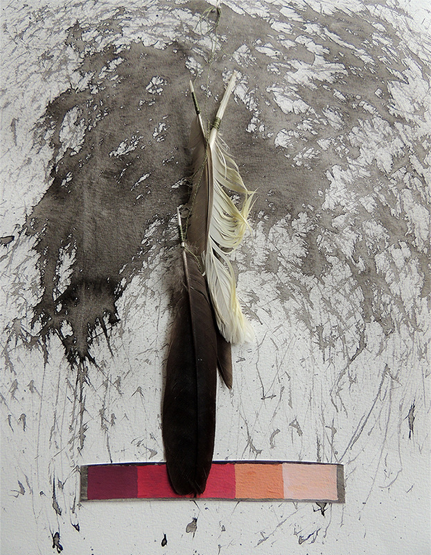 mixed media, gouache, ink, mark making, hand made brush, feathers, autumn walking project, Mornington Peninsula Artist, Amanda Nelson